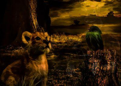 Composing; Lion; Bird; Affection