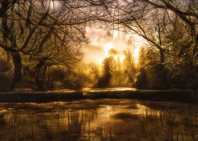 Landscape; Swamp; Water; Reflection; Autumn; Trees; Atmosphere
