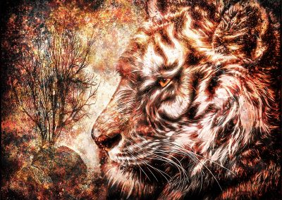 Composing; Tiger; Grunge