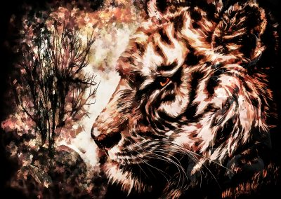 Composing; Tiger; Comic - Style