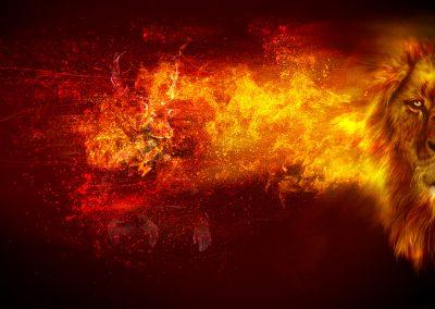 Composing; Lion; Fire; Flames; Sparks
