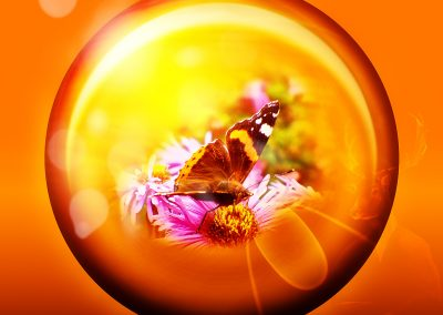 Abstrakt; Composing; Buttefly; Bubble; Bokeh