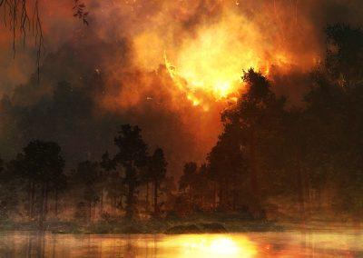 Landscape; Forest; Firestorm; Sea; Reflection; Fog; Smoke