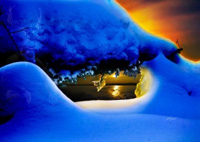 Composing; Fantasy; Robin; Bird; Winter; Snow; Sundown