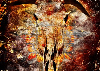 Abstrakt; Wildebeast; Skull; Grunge; Stonetexture; Africa