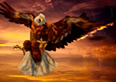 Aerial; Eagle; Attack; Evening; Clouds