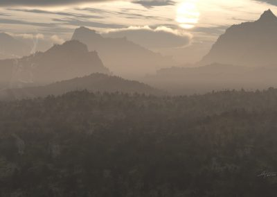 Landscape; Forest; Evening; Haze; Mist