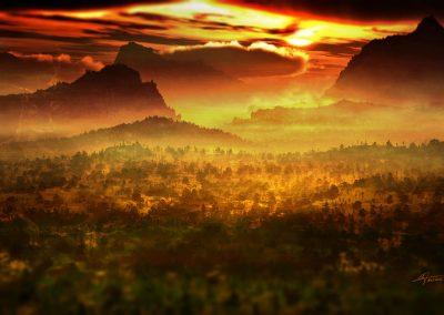 Landscape; Forest; Evening; Sundown; Haze; Mist