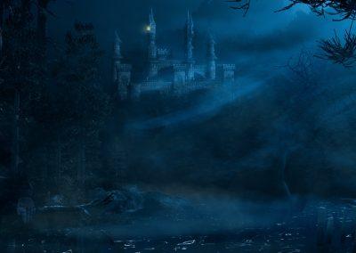 Fantasy; DarkArt; Night; Atmosphere; Castle; Fog; Mist; Sea; Water; Egret