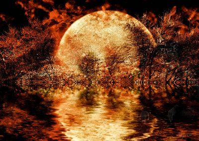 PS CS3 Image Editing; Fantasy; Forest; Night; Fire; Moon; Sea