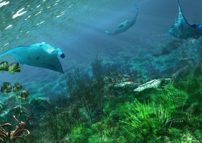 Seascape; Underwater; Mantas; Fishes; Godrays; Caustics