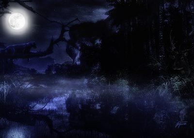 Landscape; DarkArt; Jungle; Night; Panther; Fullmoon