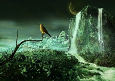 Composing; Falcon; Waterfall; Moon; Bizarre Backdrop