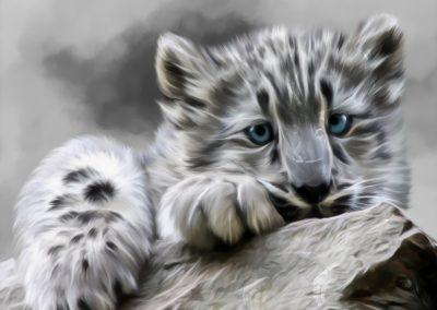 PS CS3 Image Editing; Snowleopard; Smudge; Soft