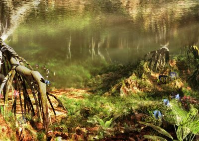 Seascape; Underwater; Mangroves; Fishes; Godrays, Reflections; Caustics