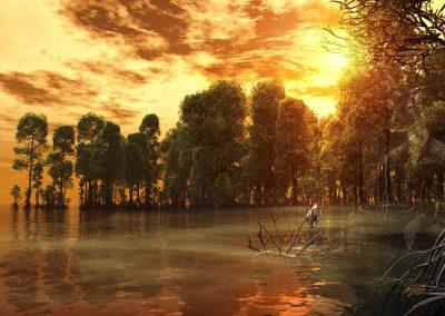 Landscape; Seascape; Water; Mangroves; Great Egret; Sundown