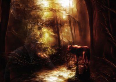 Landscape; DarkArt; Mystic; Forest; Creek; Wolf