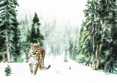 PS CS6 Image Editing; Comic Style; Persian Leopard; Nature; Winter; Snow; Forest
