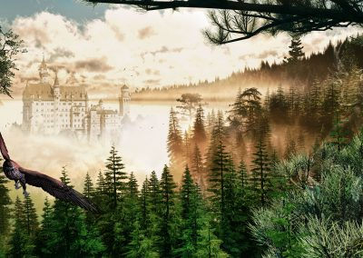 Landscape; Morninglight; Forest; Castle; Fog; Mist