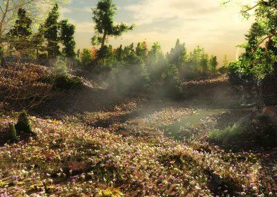 Landscape; Morninglight; Flowers; Forest Clearing; Spring; Fog; Mist