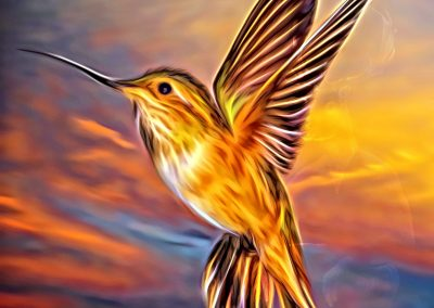 Fantasy; Bird; Smudge Painting; Glowing