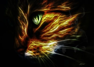 Image Editing; Cat; Smudge Painting; Oil; Soft; Glowing