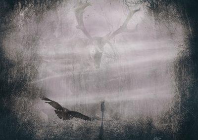Composing; DarkArt; Forest; Deer; Raven; Fog; Black & White