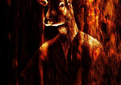 Composing; Deer; Man; Woodtexture