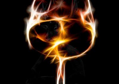Image Editing; Wineglass; Glowing