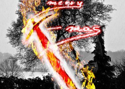 Composing; Christmas; Winter; Snow; Fire; Flames