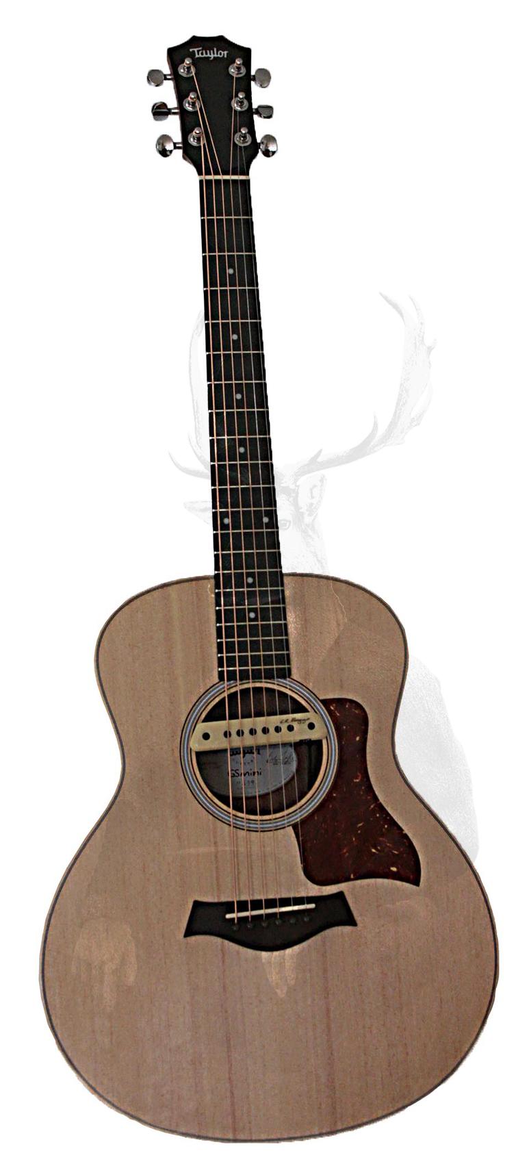 MWD 73; Contest; Gitarre acoustic; Original