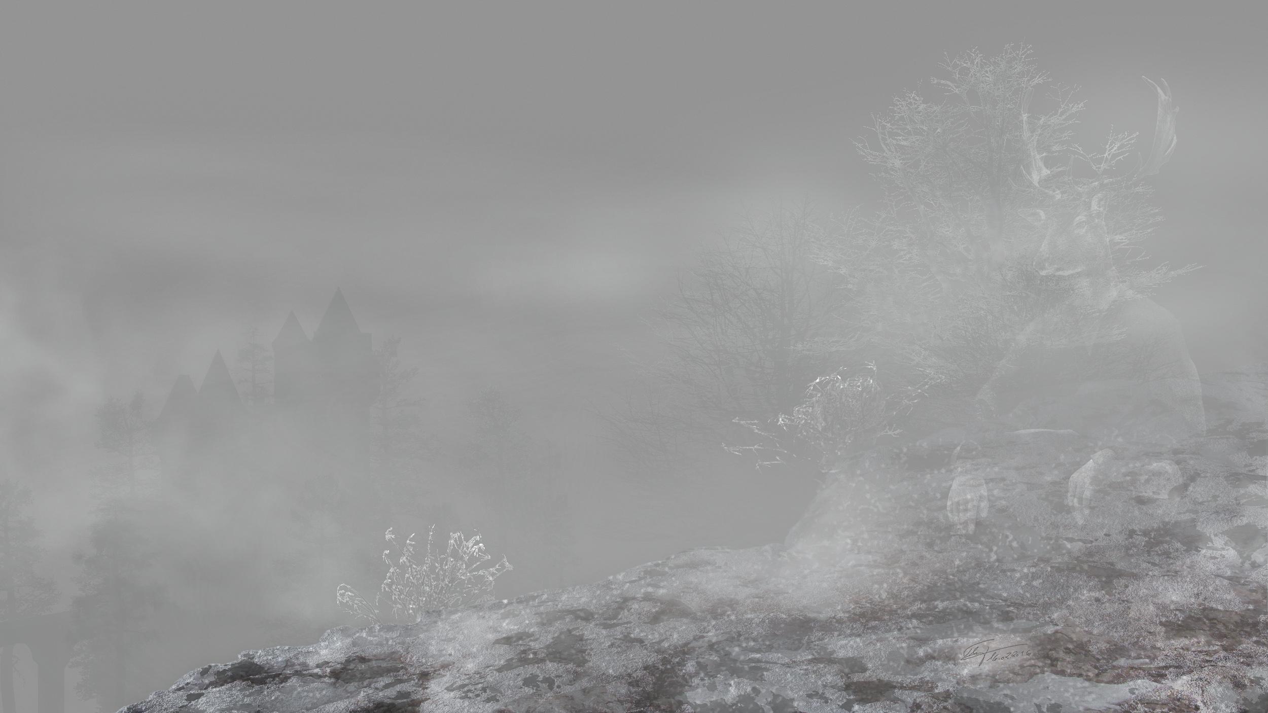 MWD 71; Contest; Cliff in the fog; Winter; Castle; Cold; Ice; Snow