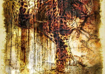 Jaguar; Grunge; Texture; Cracks