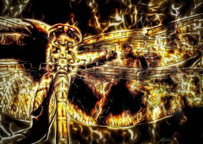 DarkArt; Grunge; Glowing; Odonata; Dragon - Fly
